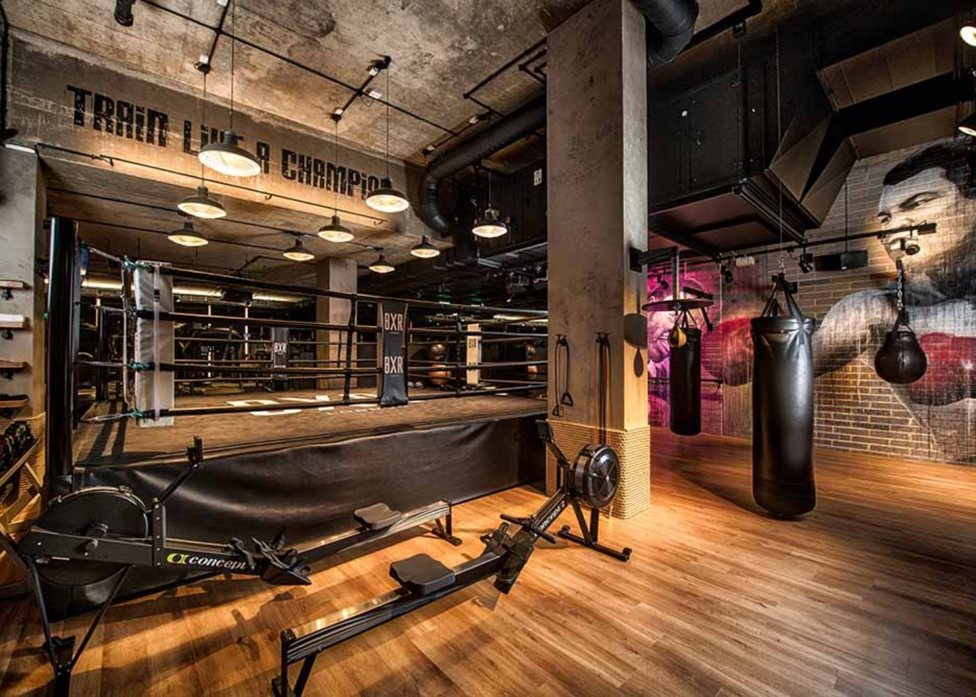 BXR-BoxingGym-HD-4